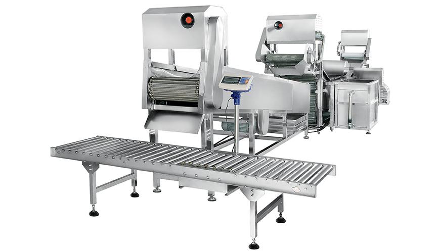 全自动大型连续式叶菜类清洗线